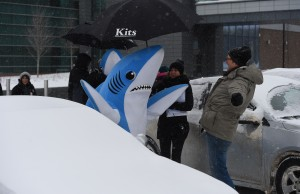 Director David Shane and the crew helping the sharks out of the car. (Joe Faraoni/ESPN Images)